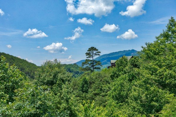 Looking at Bluff Mountain above the trees at Happy Daze, a 2-bedroom Pigeon Forge cabin rental