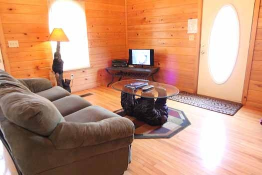 sofa bed in the living room at knotty & nice a 1 bedroom cabin rental located in gatlinburg