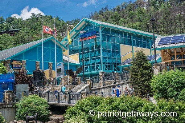 You are minutes' walking distance from Ripley's Aquarium of the Smokies Heart of Gatlinburg, a 2-bedroom Gatlinburg cabin rental