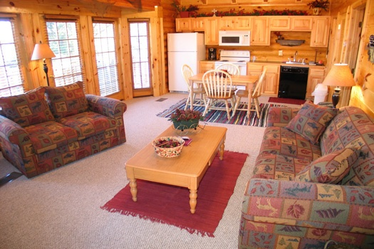 living room with sofa bed at gone fishin' a 2 bedroom cabin rental located in pigeon forge