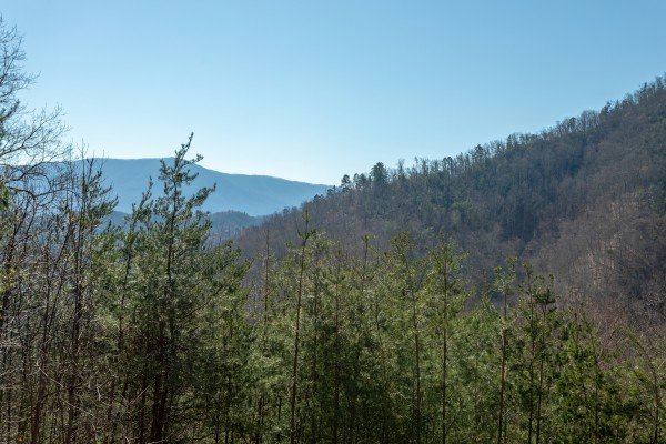 Wooded mountain view at About Time, a 2 bedroom cabin rental located in Pigeon Forge