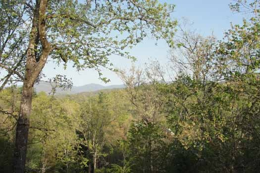 Beautiful mountain view at Tranquil View, a 1 bedroom cabin rental located in Gatlinburg