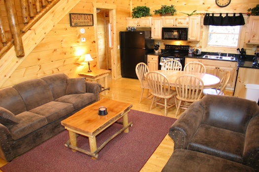 living room with sofa bed at dragonfly a 2 bedroom cabin rental located in gatlinburg