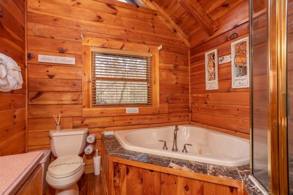 Shower and separate jacuzzi at The Original American Dream, a 2 bedroom cabin rental located in Gatlinburg
