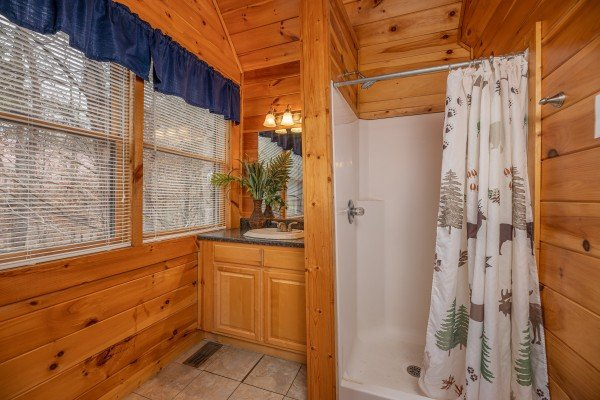 Bathroom with a shower at Alpine Tranquility, a 4 bedroom cabin rental located in Pigeon Forge