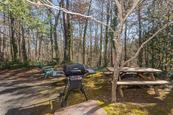 Picnic table with propane grill at Snuggle Inn, a 2 bedroom cabin rental located in Pigeon Forge