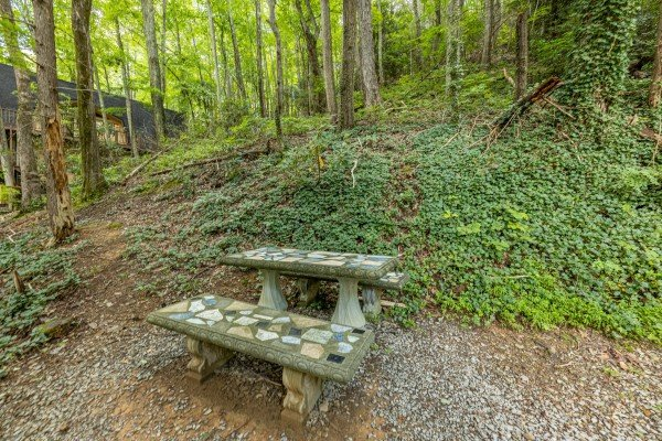 Picnic table at License to Chill, a 3 bedroom cabin rental located in Gatlinburg