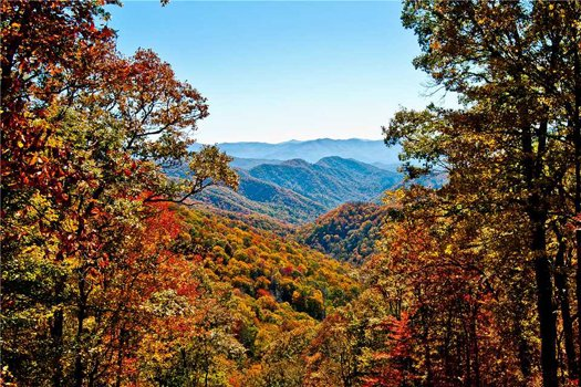 Mountain views framed by trees bursting with fall color at Grand Timber Lodge, a 5-bedroom cabin rental located in Pigeon Forge