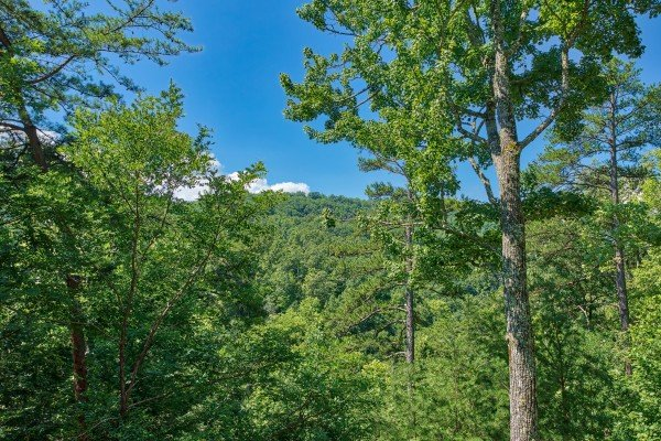 woods view at almost heaven a 1 bedroom cabin rental located in pigeon forge