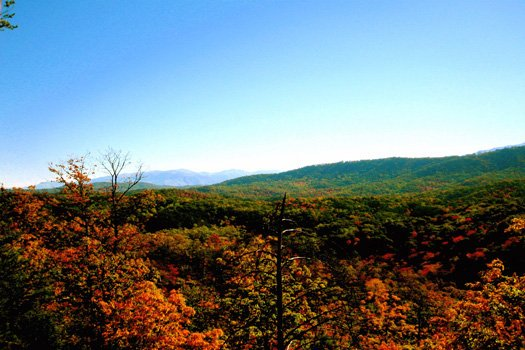 smoky mountain views in the fall from horse'n around a 3 bedroom cabin rental located in pigeon forge