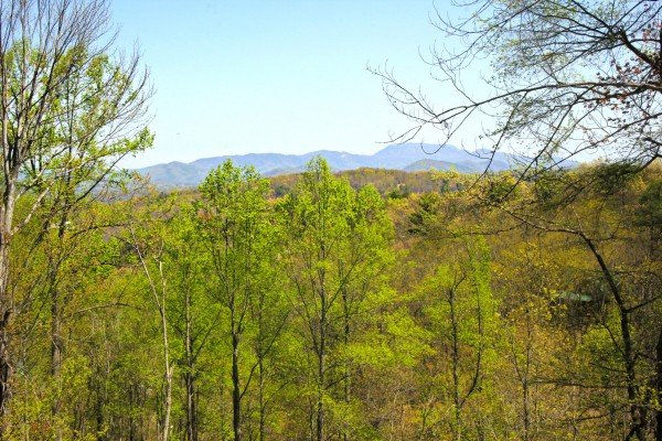 Mountain view at Makin' Honey, a 1 bedroom cabin rental located in Pigeon Forge