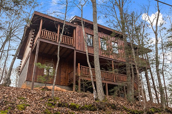 exterior wooded view at animal kingdom a 4 bedroom cabin rental located in gatlinburg