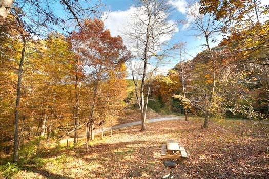 view during fall season from licklog hollow a 1 bedroom cabin rental located in pigeon forge