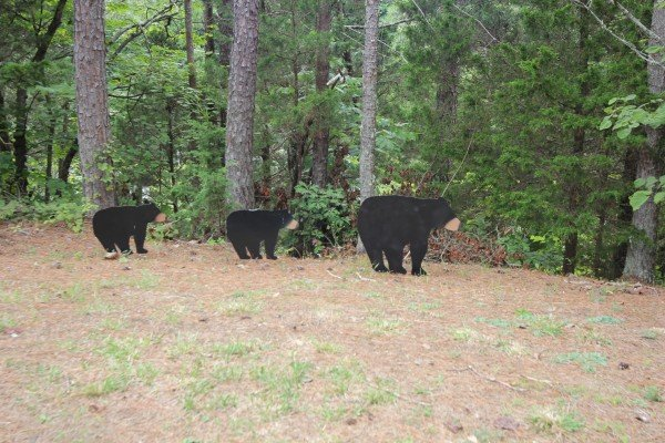 Three wooden black bears in the yard at Black Bear Holler, a 2-bedroom cabin rental located in Pigeon Forge