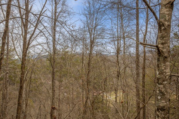 Wooded winter view at Country Getaway, a 1 bedroom cabin rental located in Pigeon Forge