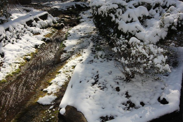 Snow near the cabin at Under Ober, a 3 bedroom cabin rental located in Gatlinburg