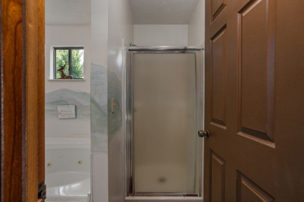 Walk in shower in a bathroom at Black Bear Ridge, a 3-bedroom cabin rental located in Pigeon Forge