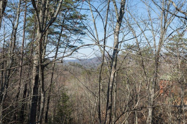 Wooded winter mountain view at Makin Memories, a 1 bedroom cabin rental located in Pigeon Forge