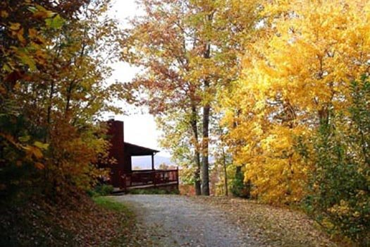 Fall colors surround the driveway at Apple View, a 2 bedroom cabin rental located in Pigeon Forge