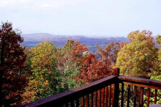 Fall colors on trees at Apple View, a 2 bedroom cabin rental located in Pigeon Forge