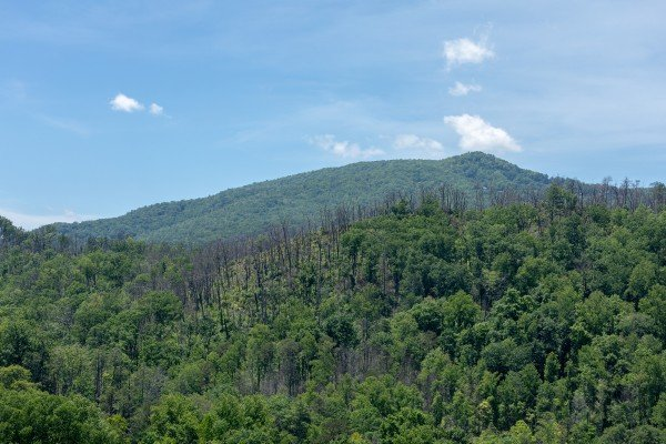 Mountain view from Elk Horn Lodge, a 5 bedroom cabin rental located in Gatlinburg