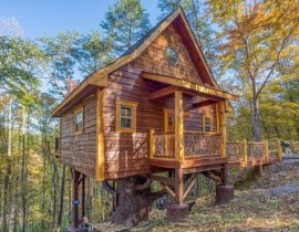 Smoky Mountain Treehouse
