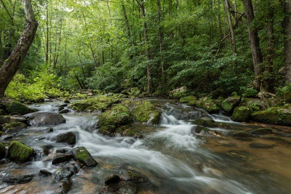 Cascading stream at Stream On! A 2 bedroom cabin rental located in Pigeon Forge