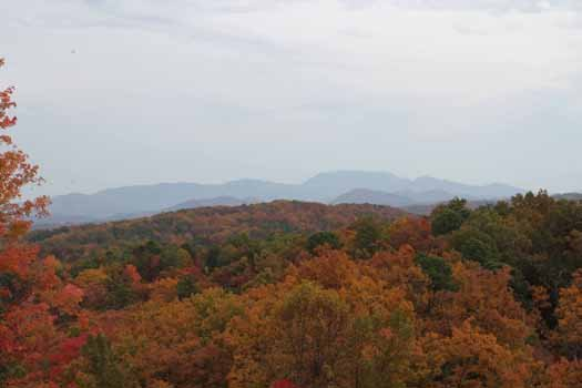 View of the fall foliage seen from Gone to Therapy, a 2-bedroom cabin rental located in Gatlinburg