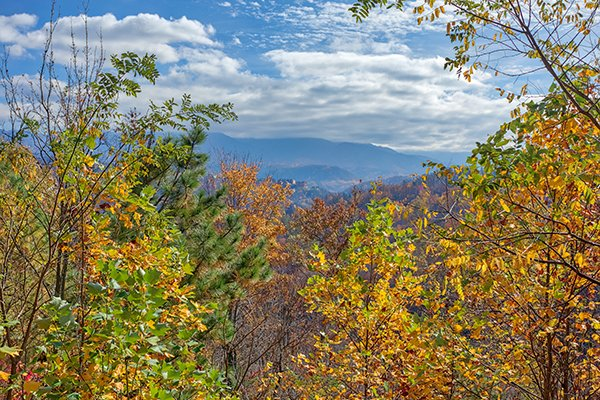 A mountain view with fall colors at Brink of Heaven, a 2-bedroom cabin rental located in Gatlinburg