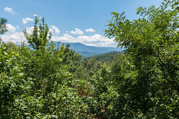 Mountain view framed by trees at Brink of Heaven, a 2-bedroom cabin rental located in Gatlinburg
