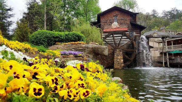 Dollywood is nearby at Sweet Serenity, a 2 bedroom cabin rental located in Gatlinburg