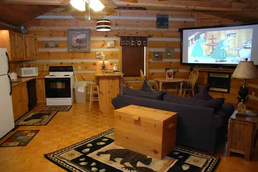 view of the kitchen and living room at a point of view a 1 bedroom cabin rental located in pigeon forge