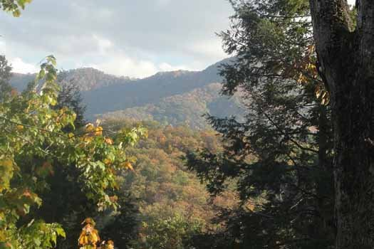 Autumn view of the Smoky Mountains at Precious View, a 1 bedroom cabin rental located in Gatlinburg