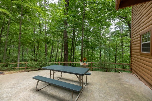 Picnic table at A Hidden Treasure, a 2 bedroom cabin rental located in Pigeon Forge