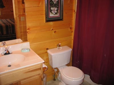 bathroom with shower at dream catcher a 1 bedroom cabin rental located in pigeon forge