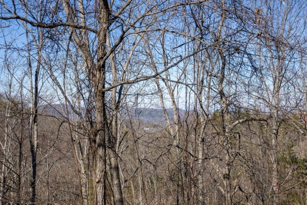Mountain views through the trees in winter at Honey Bear Haven, a 1 bedroom cabin rental located in Pigeon Forge