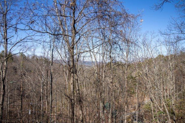 Winter mountain view through the trees at Honey Bear Haven, a 1 bedroom cabin rental located in Pigeon Forge