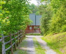 at nature's paradise a 4 bedroom cabin rental located in pigeon forge