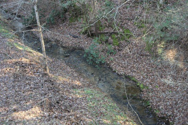 Small stream behind Blackberry Delite, a 1-bedroom cabin rental located in Pigeon Forge