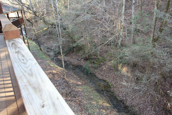 A small stream in the woods behind Blackberry Delite, a 1-bedroom cabin rental located in Pigeon Forge