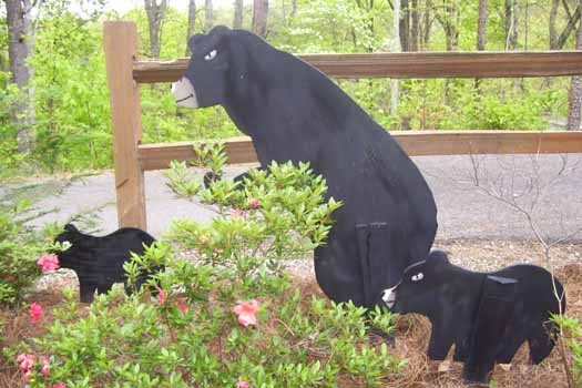 Custom yard decorationsat Mountain Manor, a 1 bedroom cabin rental located in Gatlinburg