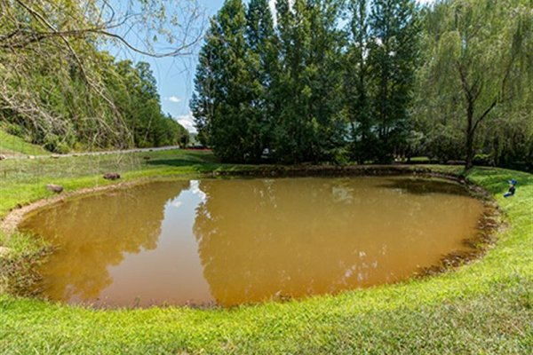Pond at Cedar Falls Resort, near Wagon Wheel Cabin, a 3 bedroom cabin rental located in Pigeon Forge