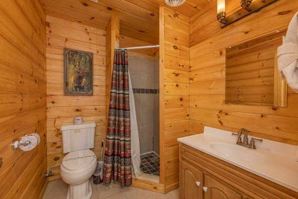 Bathroom with a shower at Bootlegger Hill Hideaway, a 2 bedroom cabin rental located in Pigeon Forge