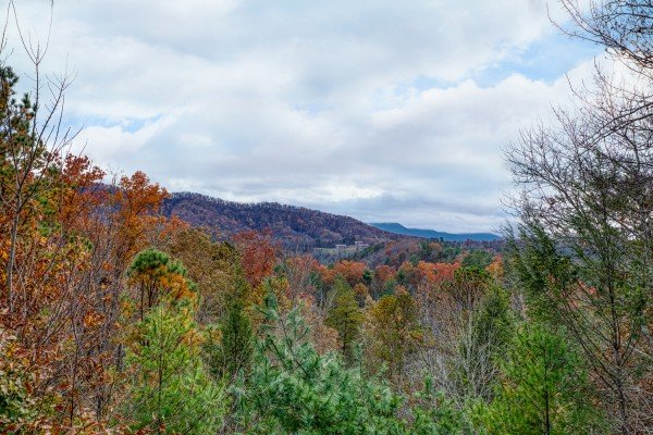 Fall colors on the Smoky Mountains at Enchanted Evening, a 1-bedroom cabin rental located in Pigeon Forge