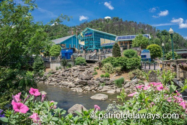 Ripley's Aquarium of the Smokies is Panorama, a 2 bedroom cabin rental located in Pigeon Forge
