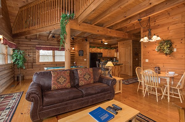 Sofa bed in the living room at Hanky Panky, a 1-bedroom cabin rental located in Pigeon Forge