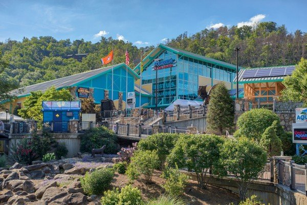 Ripley's Aquarium of the Smokies is near Swept Away in the Smokies, a 1 bedroom cabin rental located in Pigeon Forge