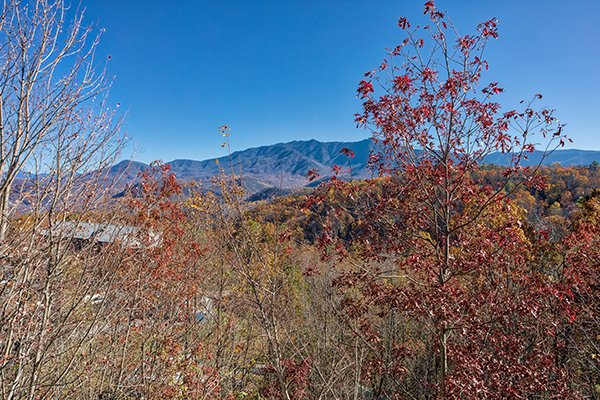 Views of the Smoky Mountains in the late fall at Chalet Mignon, an 8-bedroom cabin rental located in Gatlinburg