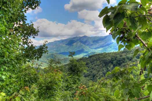 Smoky mountain vistas at Chalet Mignon, an 8-bedroom cabin rental located in Gatlinburg