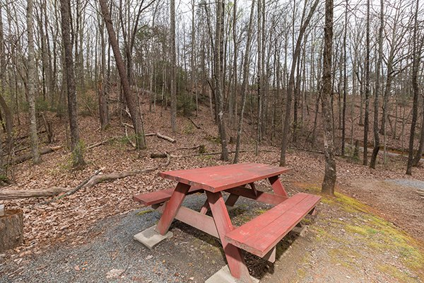 Picnic table surrounded by woods at Lucky Logs, a 3 bedroom cabin rental located in Gatlinburg